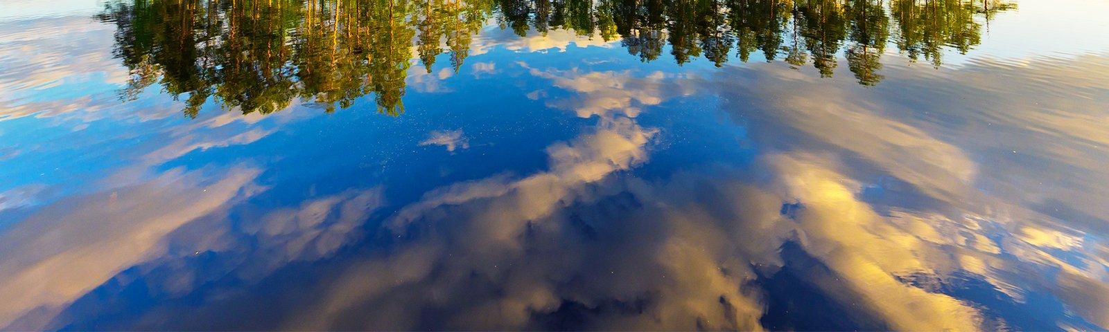 Kesäinen luonto heijastuu järvestä